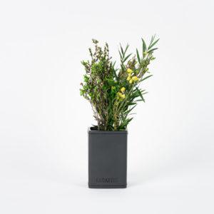 Bouquet en végétaux stabilisés Petit pot Garrigue