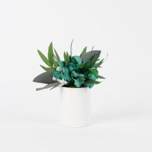 Bouquet en fleurs stabilisées Petit pot Habana