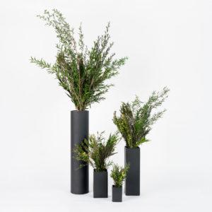 Gamme de bouquets en végétaux stabilisés Garrigue pour l'hôtellerie
