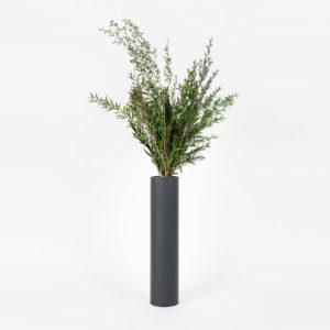 Bouquet en feuillage stabilisé Garrigue L